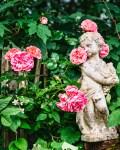 Garten im Rosa Haus