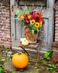 Herbstliche Blumen