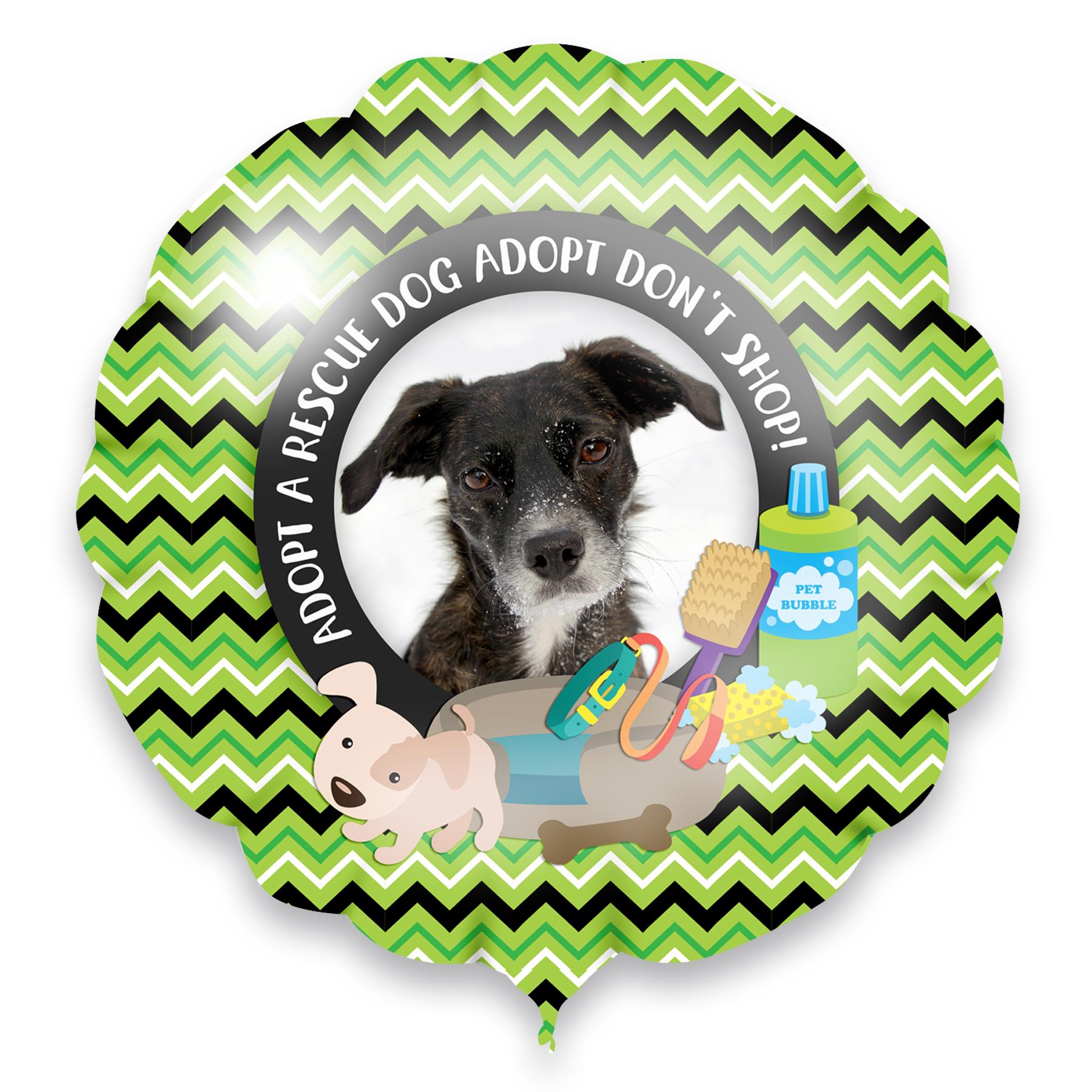 adopt a rescue dog adopt don't shop