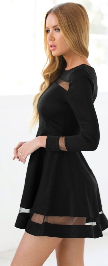 Skater Long Sleeves Mesh Panel Flare Casual Dress