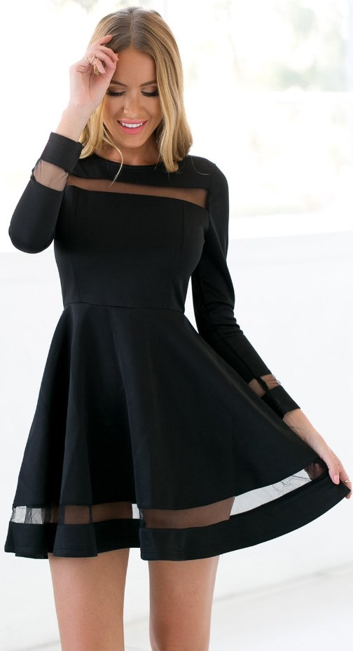 Skater Long Sleeves Mesh Panel Flare Casual Dress
