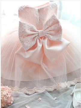 Beautiful Lace Flower Girl Party Dress