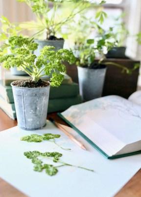 DIY pressed plants