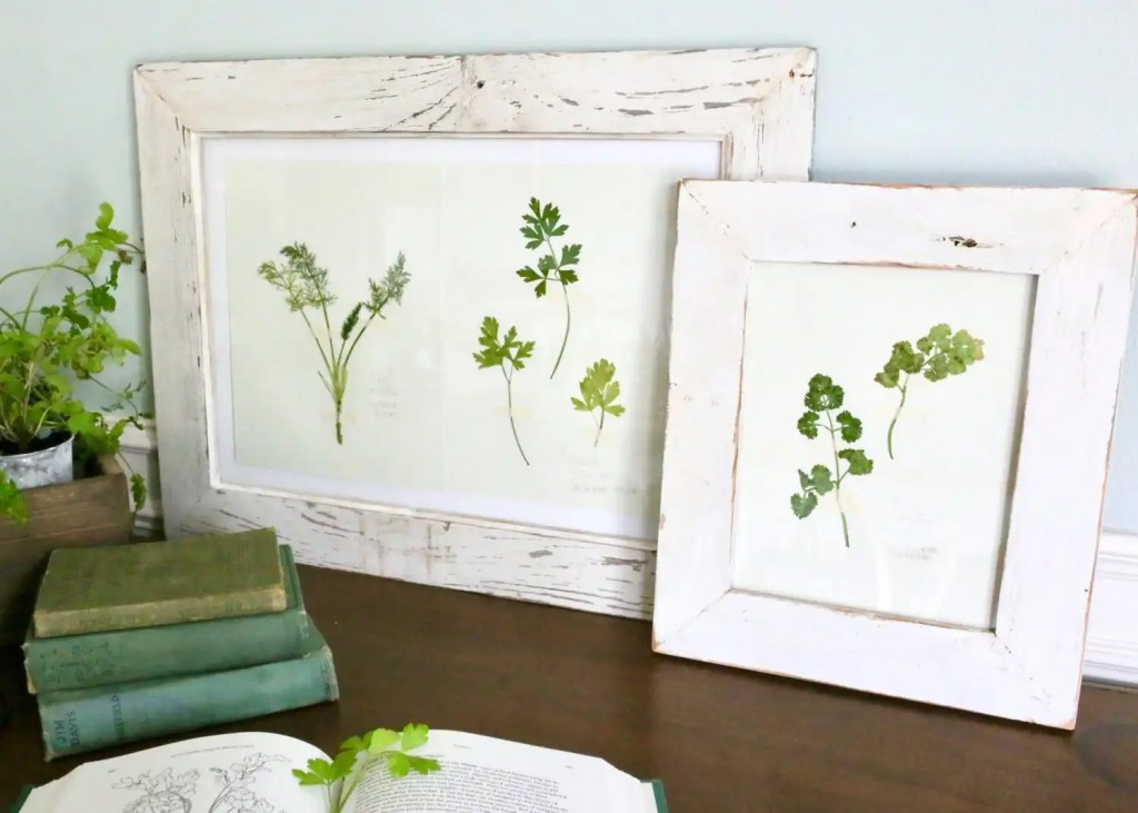 frame DIY pressed plants