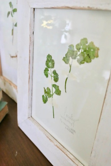 handmade botanical prints