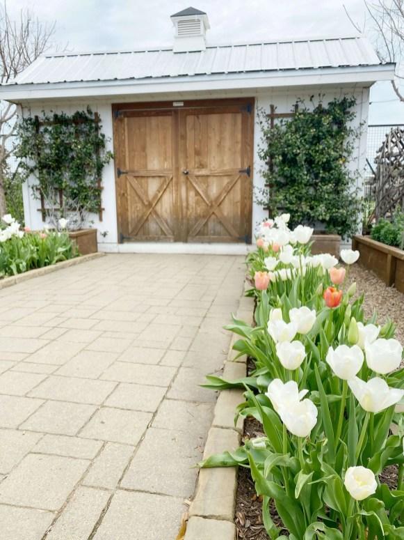 magnoliamarket
