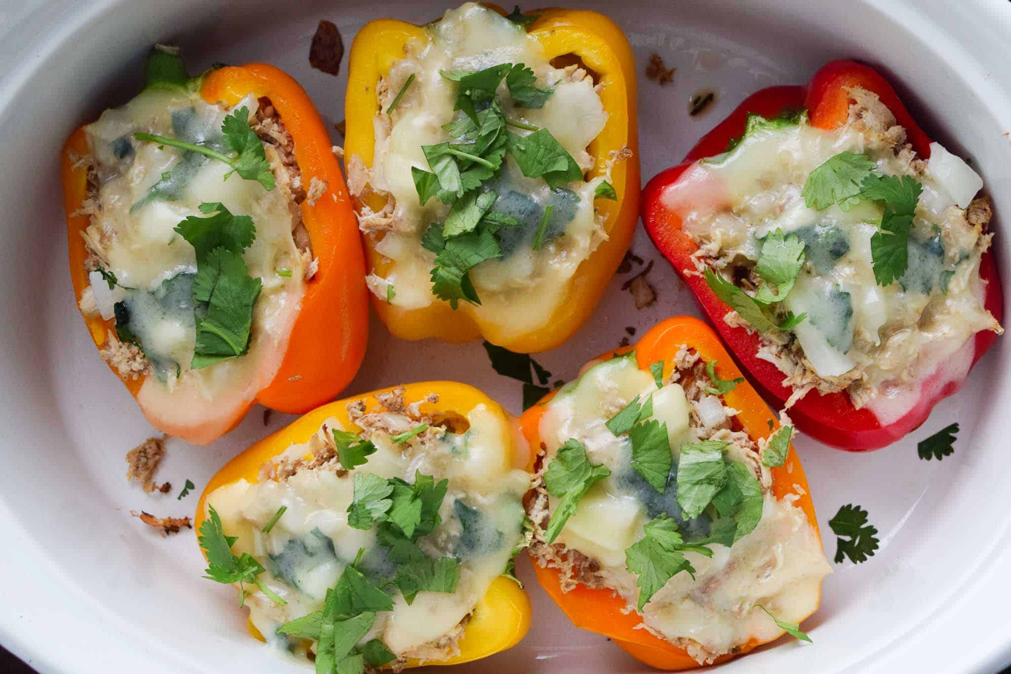 cooked chicken stuffed peppers in white dish topped with melted provolone and cilantro overhead shot