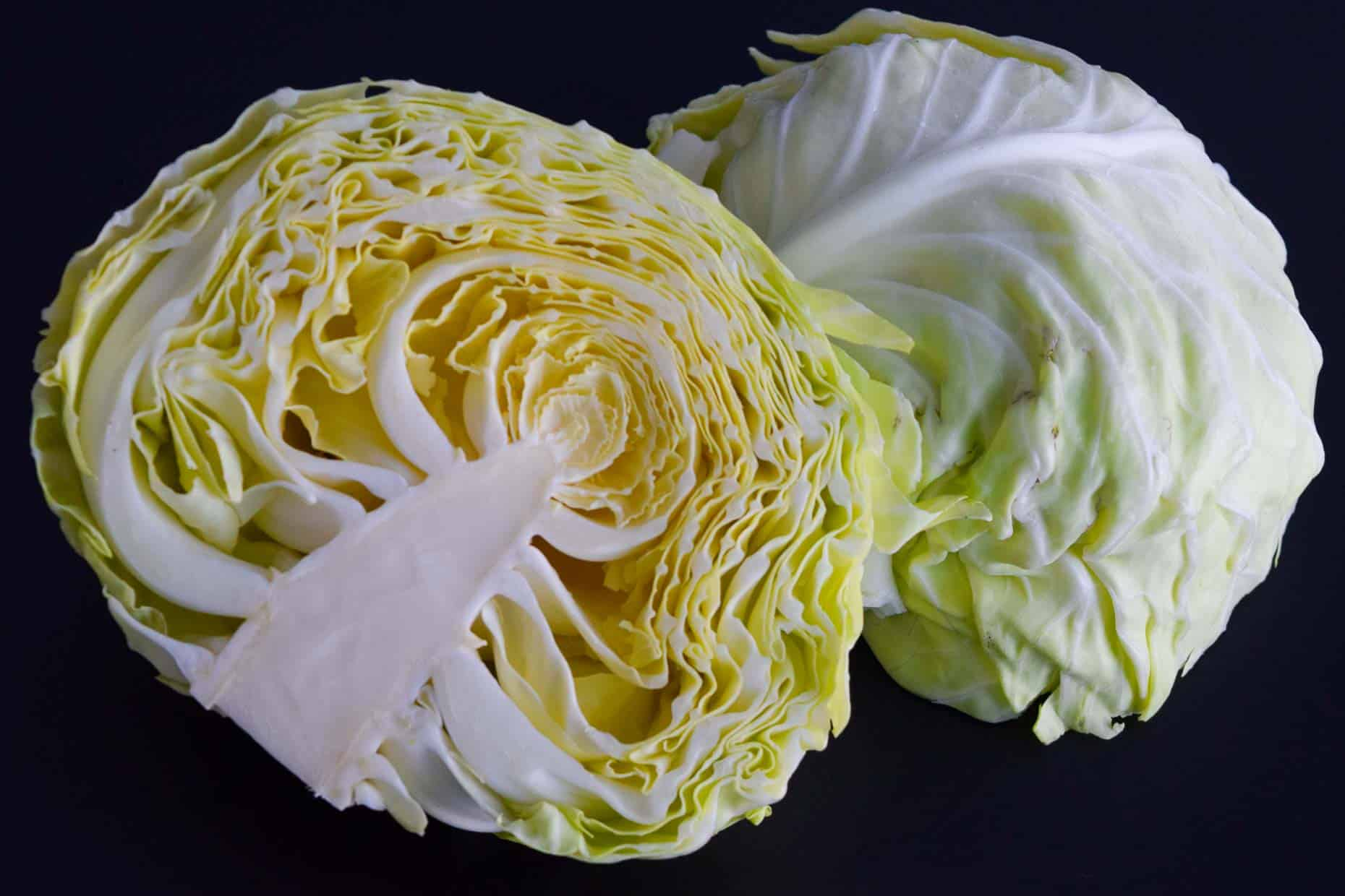 Cabbage on black background