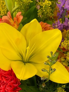 Summer Blooms - Special