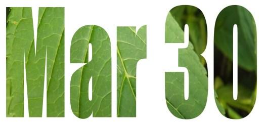 CV Spring Deadline March 30