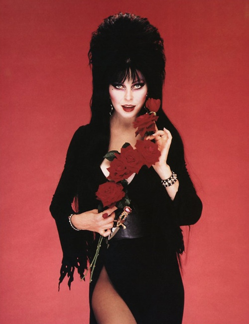 The Hottest Woman In Horror Elvira Mistress Of The Dark
