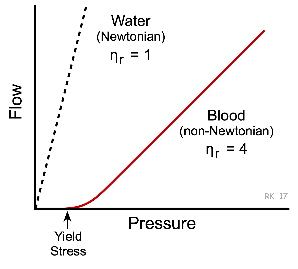 Linear Velocity Of Blood Flow Equation