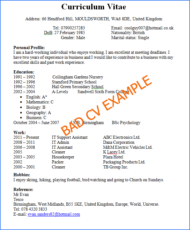 Successful Resumes Examples. Resumes Examples Of Most Successful