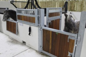 Equine building project CW Build ltd