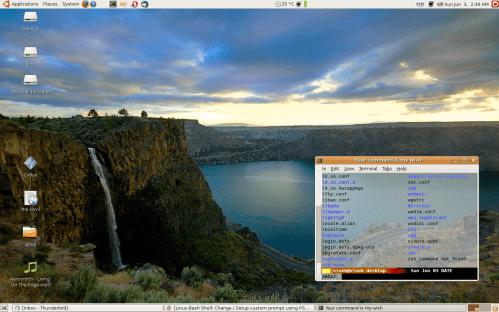 Linux desktop nice visual effect , like transparency, tinting etc