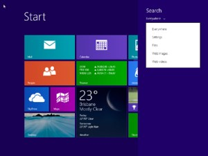 Windows 8.1 - Search