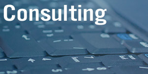 Link to Consulting page