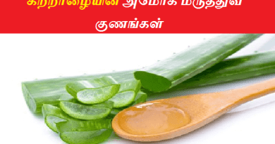 aloe vera benefits in tamil