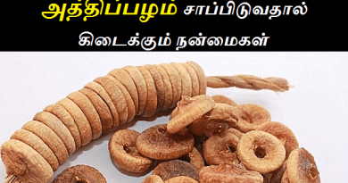 dry fig fruit benefits in tamil