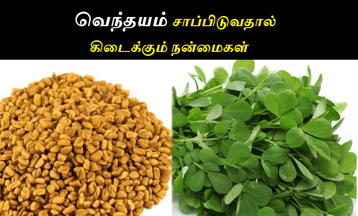 vendhayam uses in tamil