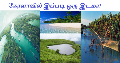 kerala-tourist place