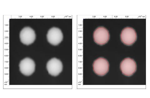 Automatic detection of BGA bumps