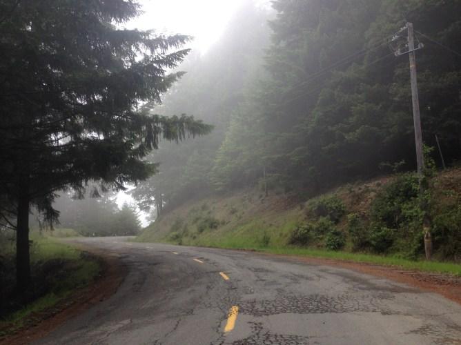 Foggy winding road.