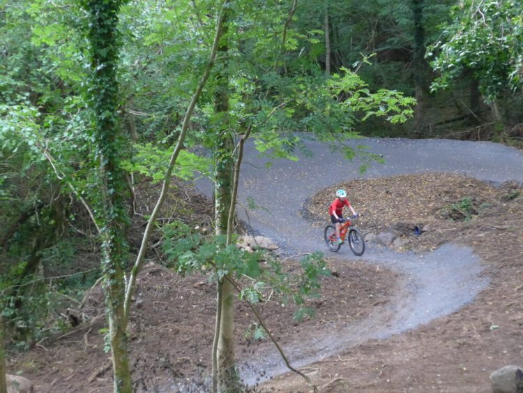 Riding the blue taster MTB loop at Kirroughtree 7 Stanes, Galloway Forest, Scotland on an Islabikes Creig Mountain Bike