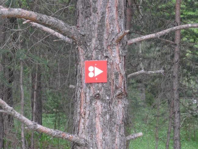 Way markers on the mountain biking trails in the French Alps