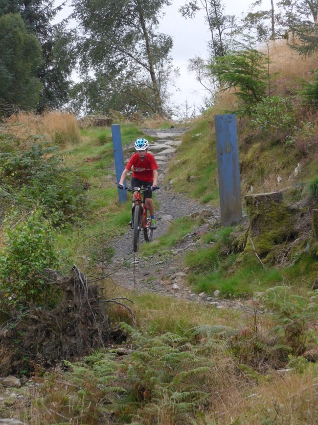 Review of the Islabikes Creig Mountain Bikes for kids - in action at Kirroughtree MTB trail
