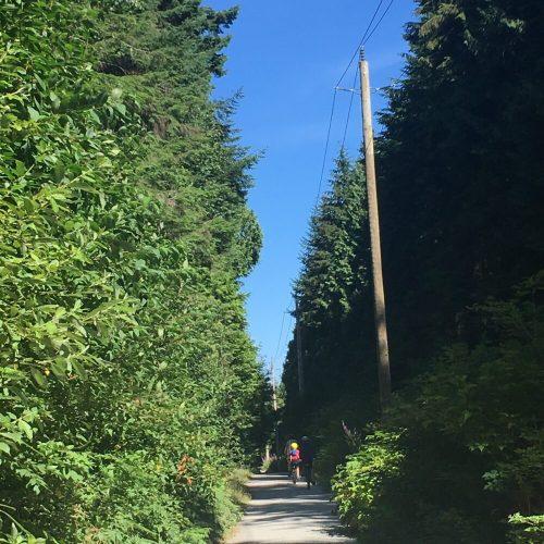 Powerline Trail Pacific Spirit Regional Park