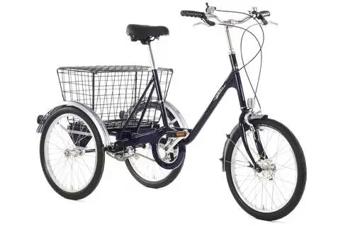 Pashley Picador Tricycle - a good choice of bike for older disabled children