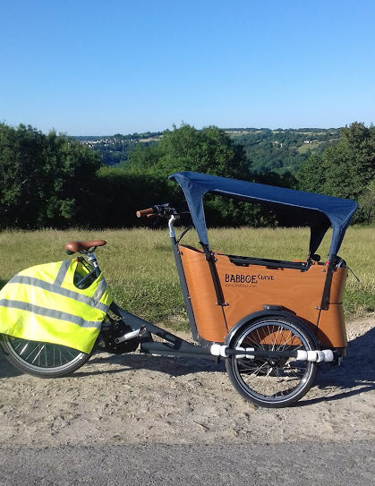 Babboe Curve Mountain e-assist cargo bike review