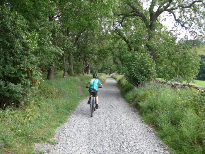 Swale Trail near Reeth - suitable for younger children