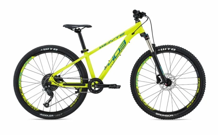 Whyte 403 - is this the best bike for a 10 year old boy?