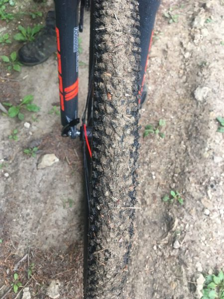 Muddy tyres on the Frog Mountain Bike