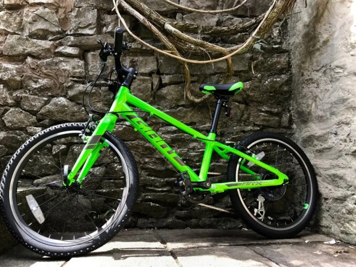 Giant ARX 20 vibrant green