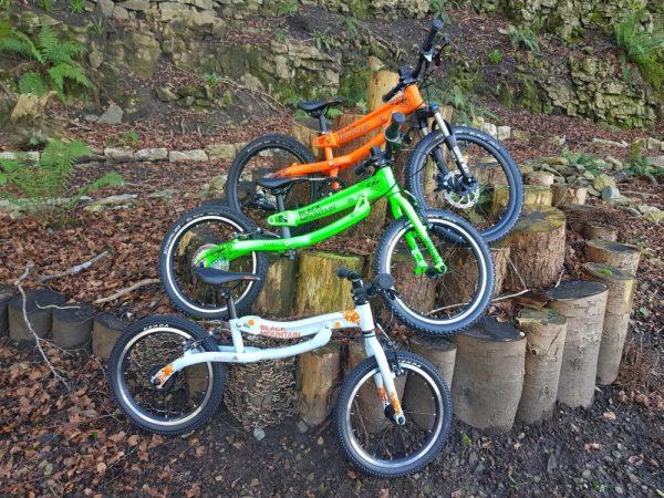 Black Mountain Skog, Hutto and Kapel3 bikes together