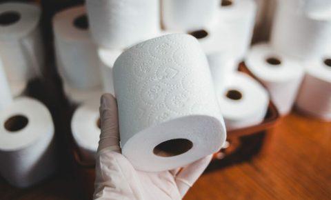 Toilet rolls - Erik Mclean - Splash