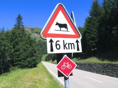A tytpical Swiss Alps road sign