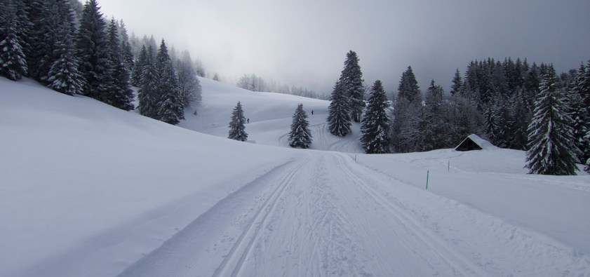 Mont Revard XC Skiing