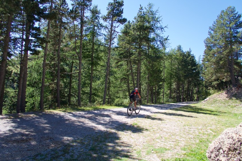 Good Quality Forestry Road