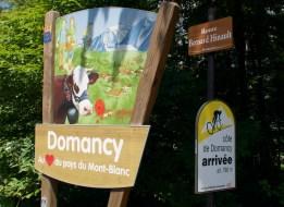 Domancy Summit