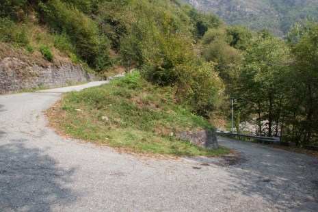 Early hairpin