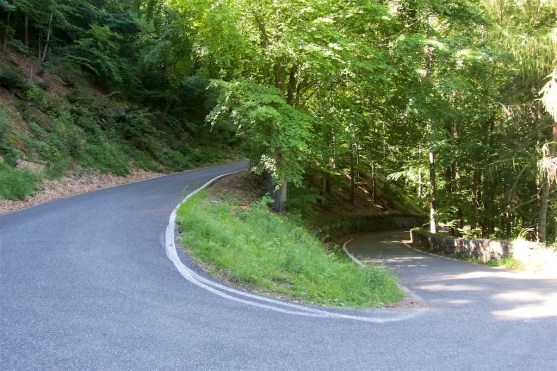 A typical hairpin