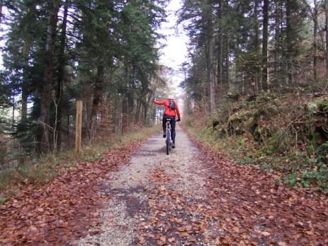 Start of laternate route