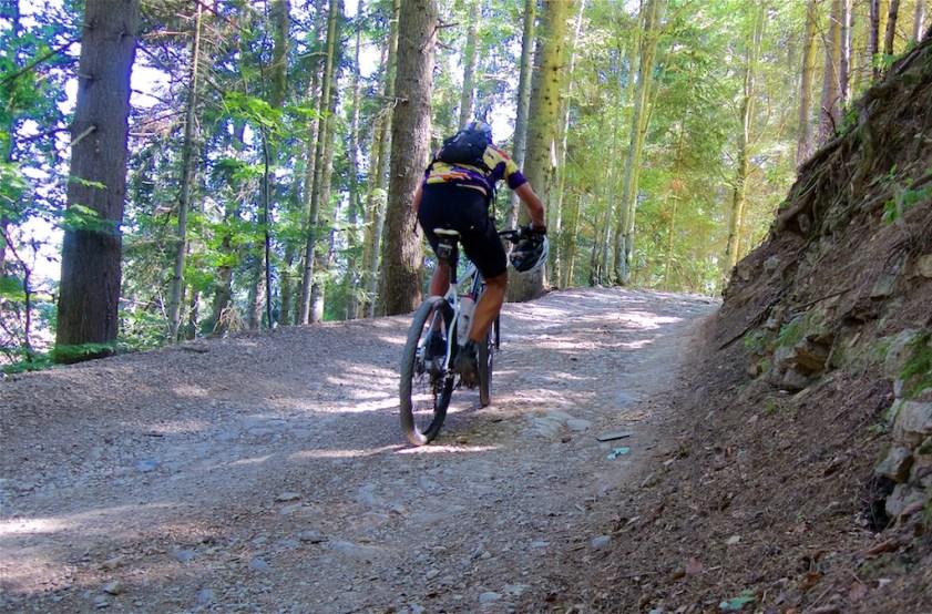 Nice gravel road in the woods