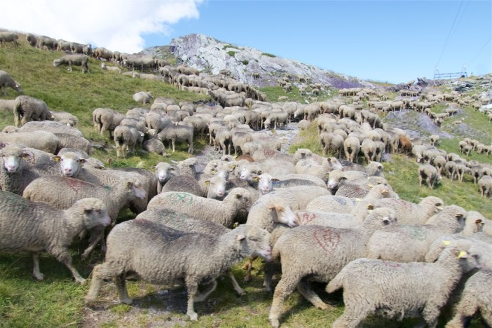 Baaah, high point of route - 2361m