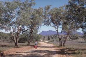 In the Flinders Rage
