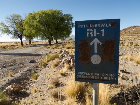 The Ruta Intersalar